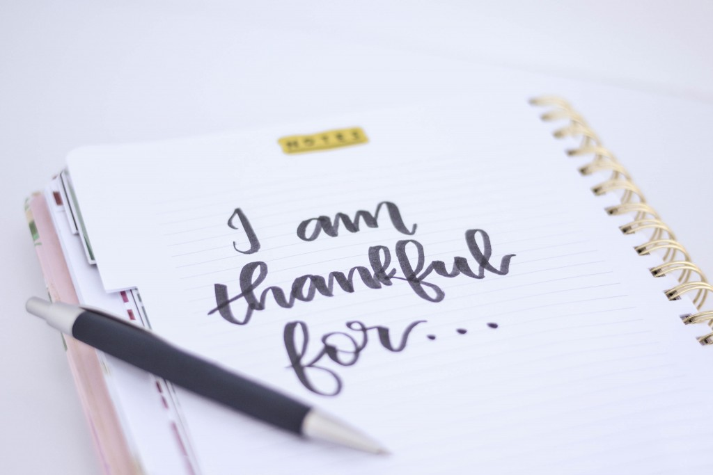 What I'm Thankful for this year...